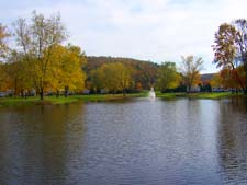 One of two ponds at J&D - Click to Enlarge